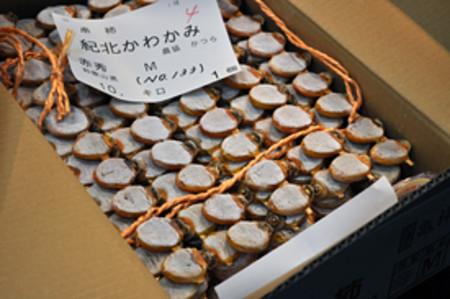 Photo_s_kusikaki021_2